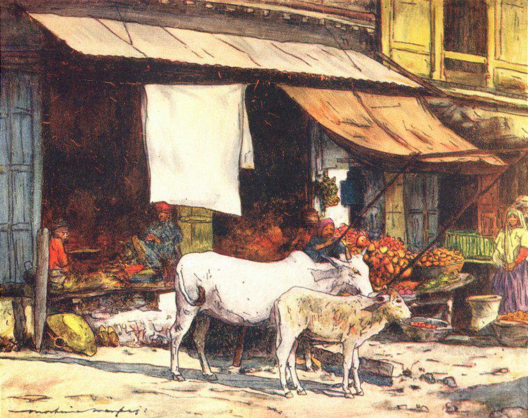 INDIA: A fruit market, Delhi, antique print 1905